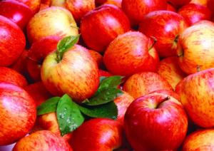 Inilah Manfaat Cuka Apel Yang Harus Kamu Tau